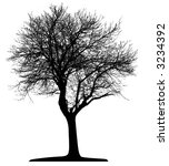 tree  vector  | Shutterstock .eps vector #3234392