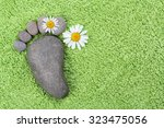 Foot With Chamomile On Green...