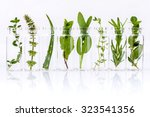 bottle of essential oil with...   Shutterstock . vector #323541356