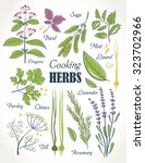 cooking herbs collection | Shutterstock .eps vector #323702966