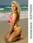 sexy beach bikini girl | Shutterstock . vector #323743202