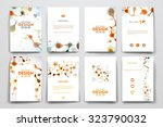 set of brochure  poster... | Shutterstock .eps vector #323790032