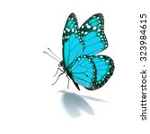 Stock photo beautiful blue monarch butterfly isolated on white background 323984615