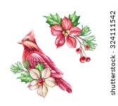 Red Bird  Poinsettia Flower ...