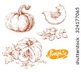 set of hand drawn sketches of... | Shutterstock .eps vector #324177065