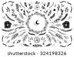 hand drawn vector vintage... | Shutterstock .eps vector #324198326