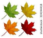set of realistic maple leaves... | Shutterstock .eps vector #324244418