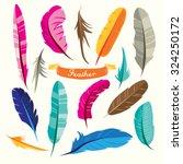 feathers vector design... | Shutterstock .eps vector #324250172