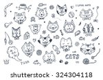 Stock vector cats vector set cats faces icons hand drawn doodles cats and accessories for pets 324304118