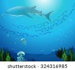 whaleshark swimming under the... | Shutterstock .eps vector #324316985