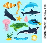 Marine Life Vector Design...
