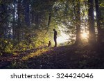 Stock photo man walking his dog in the woods standing backlit by the rising sun casting a warm glow and long 324424046