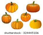 ripe autumnal orange pumpkin... | Shutterstock .eps vector #324445106