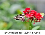 butterfly and flower in the... | Shutterstock . vector #324457346