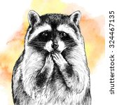 Ink Raccoon Face On Watercolor...