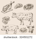 vector hand drawn food sketch... | Shutterstock .eps vector #324501272