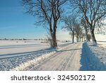 New Plowed Winter Road In The...