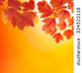 fall  autumn  leaves background.... | Shutterstock . vector #324523118