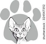close up of sphynx cat. vector... | Shutterstock .eps vector #324547352