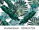 Stock vector tropical palm leaves jungle leaves seamless vector floral pattern background 324611726