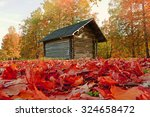 Wooden Small House In The...