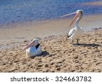Two Pelicans On Sand Bar...