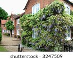 English Rural Village Houses...