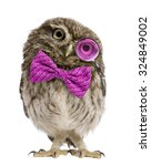 little owl wearing magnifying... | Shutterstock . vector #324849002