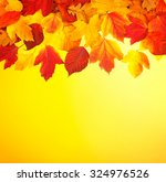 fall  autumn  leaves background.... | Shutterstock . vector #324976526