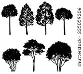 set of tree silhouettes ... | Shutterstock .eps vector #325059206