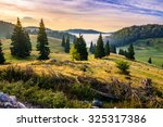 hillside with coniferous forest among the fog on a meadow in mountains of Romania in morning light - stock photo