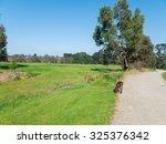 former freeway reserve  now...   Shutterstock . vector #325376342