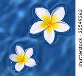 Two Frangipani Flowers Floatin...