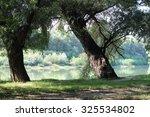 tributaries of the danube river   Shutterstock . vector #325534802