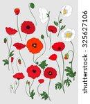 poppy flower. red poppies... | Shutterstock .eps vector #325627106