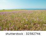 green grass with flowers  blue... | Shutterstock . vector #32582746