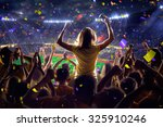 fans on stadium game  | Shutterstock . vector #325910246