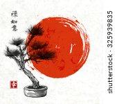 Bonsai Pine Tree Hand Drawn In...