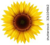 sunflower isolated  vector... | Shutterstock .eps vector #326104862