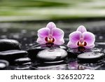 Two Orchid With Long Leaf And...