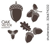 Oak. Isolated Acorns On White...