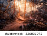 fantasy tropical jungle forest... | Shutterstock . vector #326831072