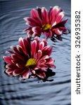 floating flowers | Shutterstock . vector #326935382