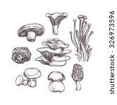 mushroom set on white background   Shutterstock .eps vector #326973596