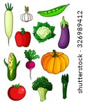 colorful cartoon healthy... | Shutterstock .eps vector #326989412