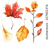 Autumn Leaves Painted With...