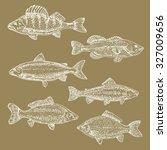 vintage sea illustration. hand... | Shutterstock .eps vector #327009656