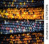 Multicolored Indian Corn On...