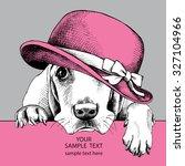 Dog Basset Hound Portrait In...