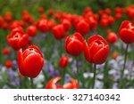 red tulips background | Shutterstock . vector #327140342